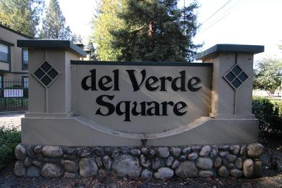 Sacramento Condo For Sale: 450 Del Verde Circle