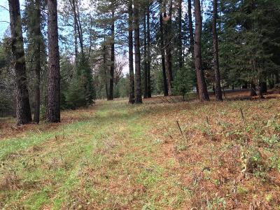 Residential Lots & Land For Sale: 9400 Grizzly Flat Road