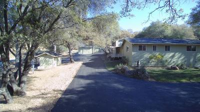 Sonora Single Family Home For Sale: 17797 Wards Ferry Road