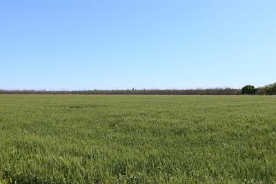 San Joaquin County Commercial Lots & Land For Sale: 7327 Northland Road