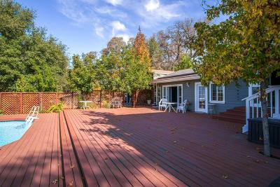 Placerville Single Family Home For Sale: 4670 Schirle Drive