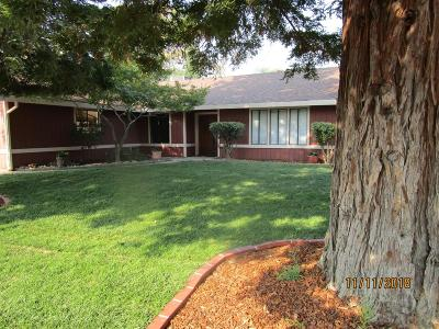 Fair Oaks Single Family Home For Sale: 6951 Pampas Way