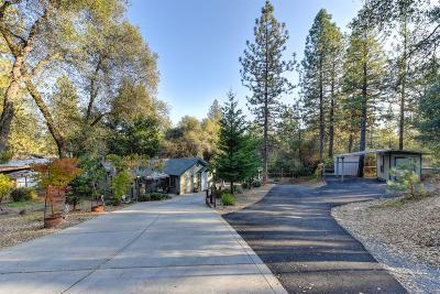 Placerville Single Family Home For Sale: 9561 Mosquito Road