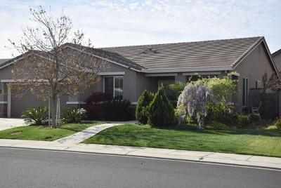 Manteca Single Family Home For Sale: 182 Catmint Street