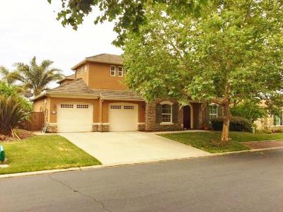 Roseville Single Family Home For Sale: 9225 Pinehurst Drive