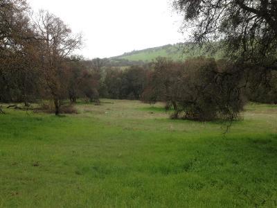 El Dorado Residential Lots & Land For Sale: Sierra Real