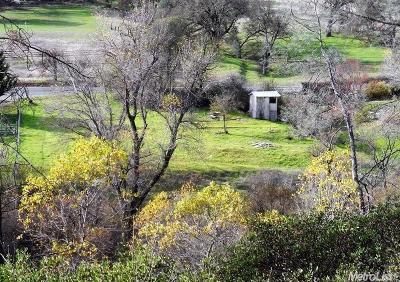 El Dorado Residential Lots & Land For Sale: 7881 State Highway 49