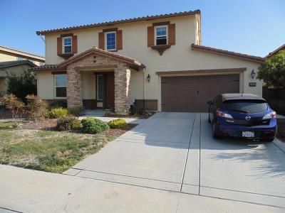 Rocklin Single Family Home For Sale: 905 Anvil Circle