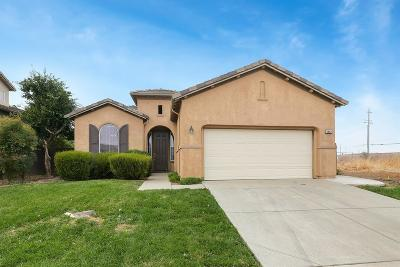 Elk Grove Single Family Home For Sale: 8882 Glastris Way