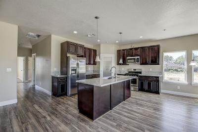 Sacramento Single Family Home For Sale: 4309 Dry Creek Road