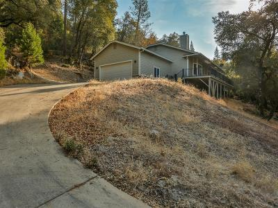 El Dorado County Single Family Home For Sale: 6684 Summerhill Road