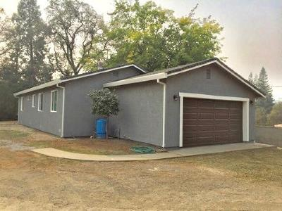 Placer County Single Family Home For Sale: 800 Drake Drive