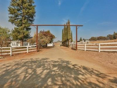 Amador County Single Family Home For Sale: 16989 Demartini