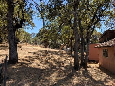 El Dorado County Single Family Home For Sale: 6000 Wind Road