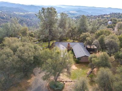 Tuolumne Single Family Home For Sale: 18010 Yosemite Road