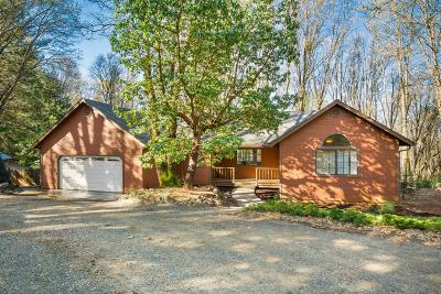 Nevada City Single Family Home For Sale: 14142 Lightning Tree Road