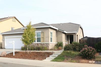 Rancho Cordova Single Family Home For Sale: 5129 Otter Pond Way