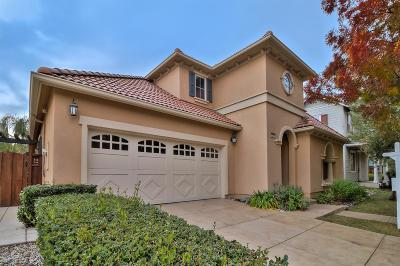 Mountain House Single Family Home For Sale: 254 West Fauna Avenue
