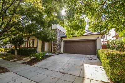 Mountain House Single Family Home For Sale: 328 West Conejo Avenue