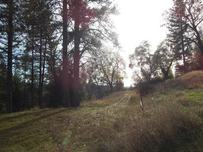 Fiddletown Residential Lots & Land For Sale: 29 Wildlife Trl