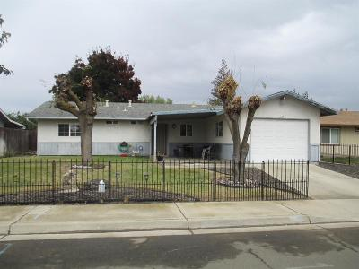 Newman Single Family Home For Sale: 1328 Basil Court