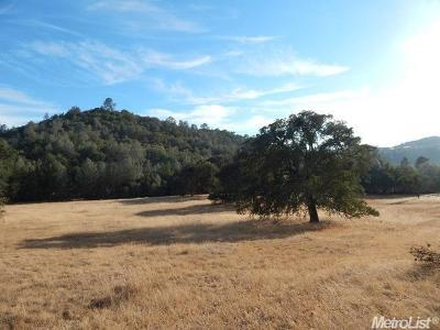 Amador County Residential Lots & Land For Sale: Hidden Mesa