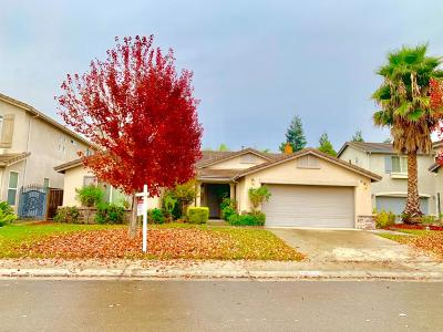Stockton Single Family Home For Sale: 10634 Hidden Grove