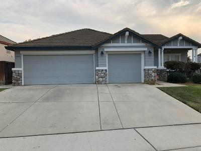 Elk Grove Single Family Home For Sale: 9400 Lyndley Plaza Way
