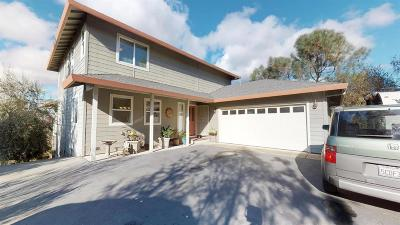 Cameron Park Single Family Home For Sale: 3723 Valerio Drive