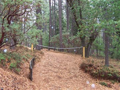 Grizzly Flats Residential Lots & Land For Sale: 5322 Forest View Drive