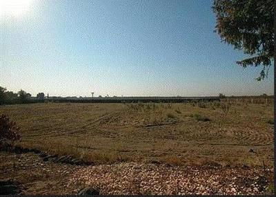Manteca Residential Lots & Land For Sale: 7276 East Woodward Avenue