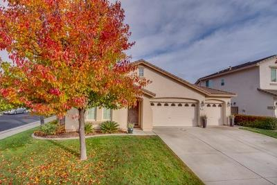 Roseville Single Family Home For Sale: 1705 San Esteban Circle