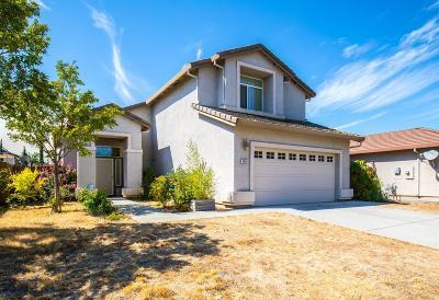 Rancho Cordova Single Family Home For Sale: 3564 Riojo Way