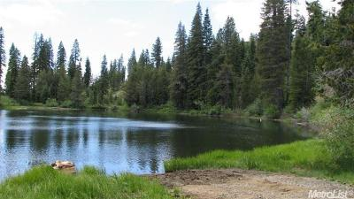 Placer County Residential Lots & Land For Sale: 99998 Off Forest Route 38