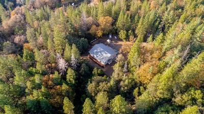 El Dorado County Single Family Home For Sale: 8360 Fair Pines Lane
