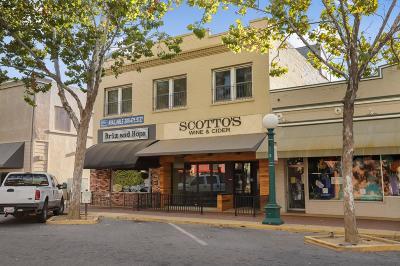 Lodi Commercial For Sale: 14 South School Street