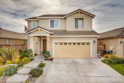 Elk Grove Single Family Home For Sale: 4856 Ammolite Way