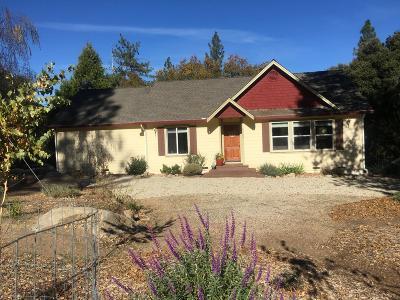 El Dorado County Single Family Home For Sale: 6305 Dean Road