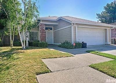 Elk Grove Single Family Home For Sale: 9133 Old Creek Drive