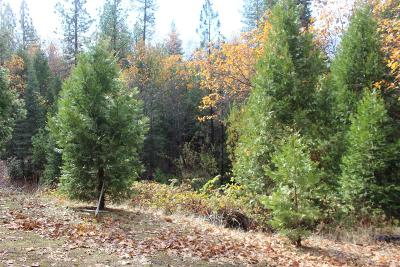 Placerville Residential Lots & Land For Sale: Bonita Vista