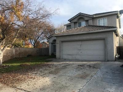 Single Family Home Active Short Cont.: 2882 Horsetail Drive