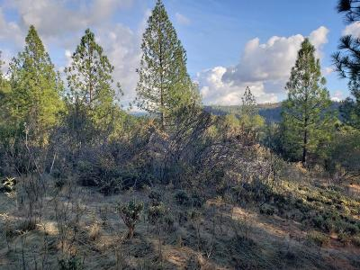Sutter Creek Residential Lots & Land For Sale: 17100 Century Lane