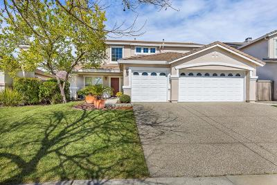 Sacramento Single Family Home For Sale: 441 Regency Park Circle
