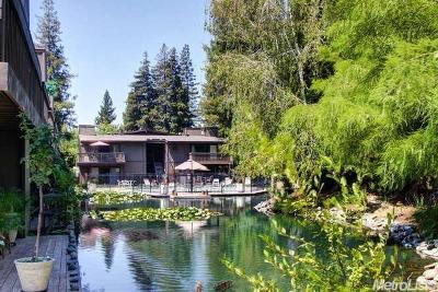 Sacramento Condo For Sale: 2458 Larkspur Lane
