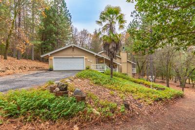 Placer County Single Family Home For Sale: 6260 Baywood Court