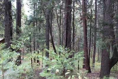 Pollock Pines Residential Lots & Land For Sale: 6825 Onyx Trail