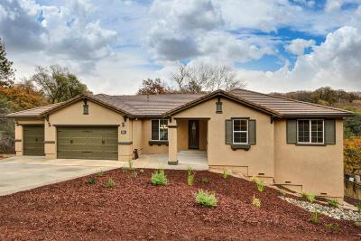 El Dorado County Single Family Home For Sale: 3609 Montclair Road