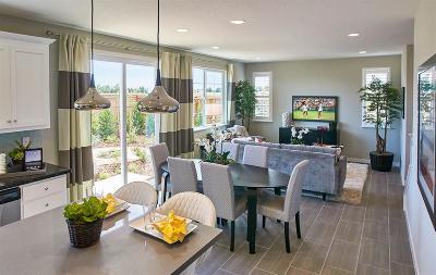 Roseville Single Family Home For Sale: 1008 Oakbriar Circle