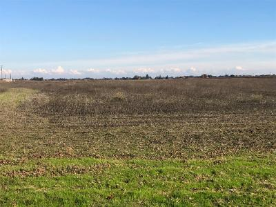Lodi Residential Lots & Land For Sale: 22040 North Devries Road