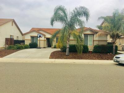 Elk Grove Single Family Home For Sale: 8569 Armada Court